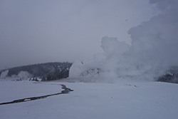 Cloudy Yellowstone Geyser