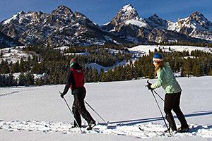 Nordic Skiing Jackson Hole