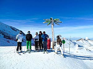 Palm Tree Ski Pic
