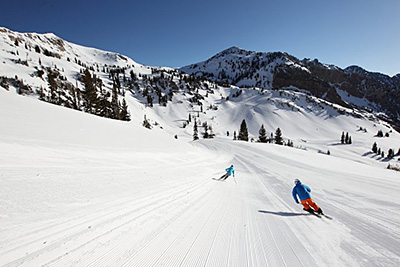 Two Skiers in Snowbird