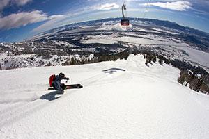 Jackson Hole Skier