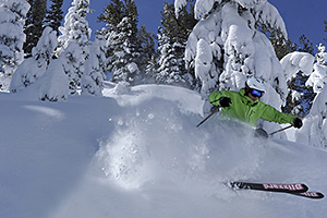 Heavenly Extreme Skier