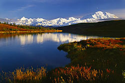 Denali in Summer
