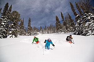 Jackson Hole Skiers