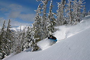 Mt. Bachelor Ski Powder
