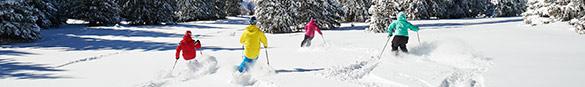 Vail Skiers